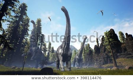 Diplodocus  Dinosaur 3 Stock photo © AlienCat