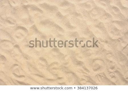 sabbia · texture · senza · soluzione · di · continuità · giallo · sporca · macro - foto d'archivio © tashatuvango
