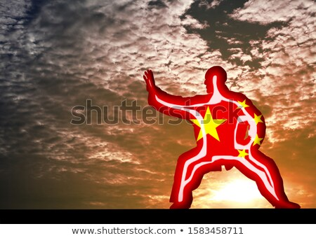 Kung-fu by sunset - 3D render Stock photo © Elenarts