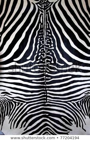 Imitatie zebra leder textuur dier zwart wit Stockfoto © lunamarina