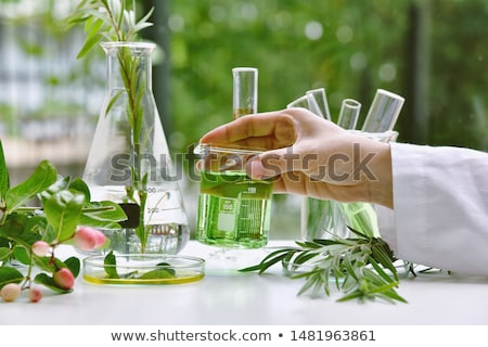 зеленый химический стакан воды стекла ресторан обеда Сток-фото © photography33