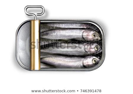 свежие приготовленный лук-порей брокколи продовольствие рыбы Сток-фото © photosil