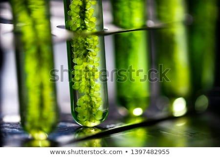bio · brandstof · onderzoek · shot - stockfoto © shawnhempel