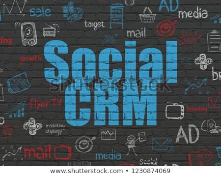 Social CRM Concept on the Wall. Stock photo © tashatuvango