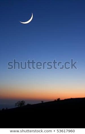 月 日没 木 空 自然 ストックフォト © shihina