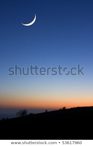 Luna puesta de sol árboles cielo naturaleza Foto stock © shihina