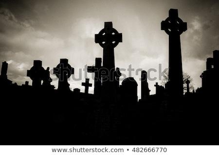 Old Scottish graveyard Stock photo © michaklootwijk