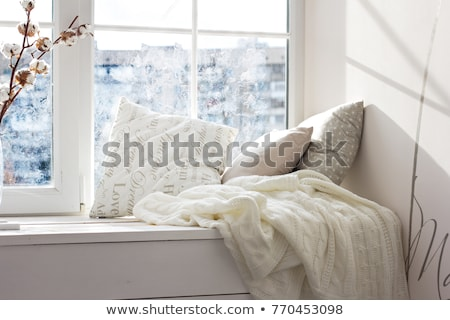 Plaid Brown Cushions Stock photo © stevanovicigor