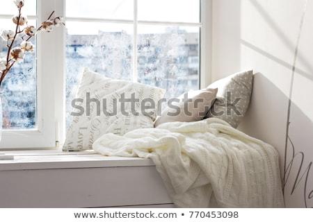 poduszki · pary · brązowy · biały · tle · meble - zdjęcia stock © stevanovicigor
