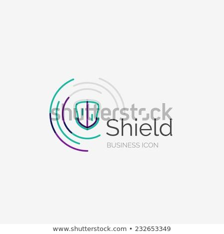 защищенный Purple вектора икона кнопки интернет Сток-фото © rizwanali3d