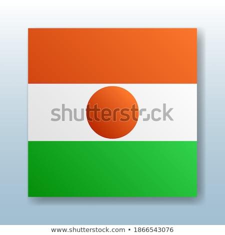 Pulsante simbolo Niger bandiera mappa bianco Foto d'archivio © mayboro1964