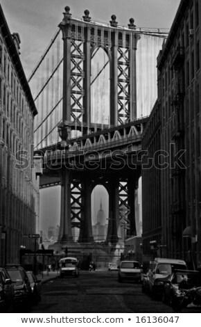 the new york downtown w brooklyn bridge and brooklyn park stock photo © hanusst