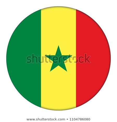 Senegal vlag shirt zakenman tonen business Stockfoto © fuzzbones0