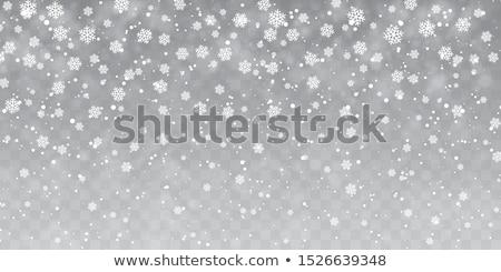 3D · vallen · sneeuwvlokken · winter · licht · sneeuw - stockfoto © solarseven