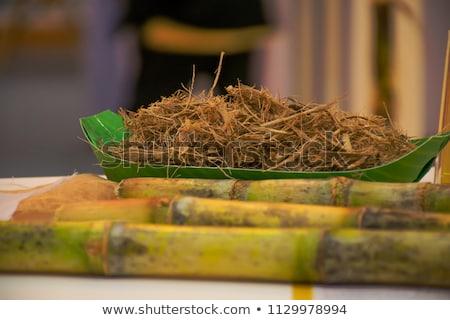 Groene materiaal macro afbeelding gazon Stockfoto © Onyshchenko
