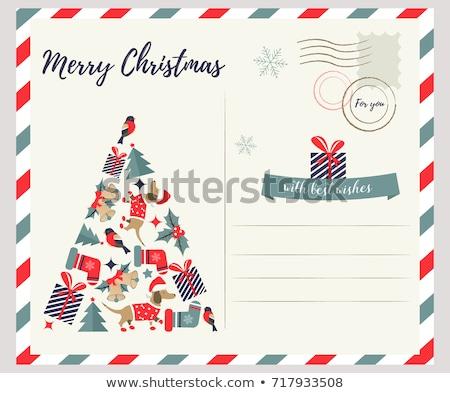 Hond christmas wenskaart decoraties gelukkig leuk Stockfoto © marimorena