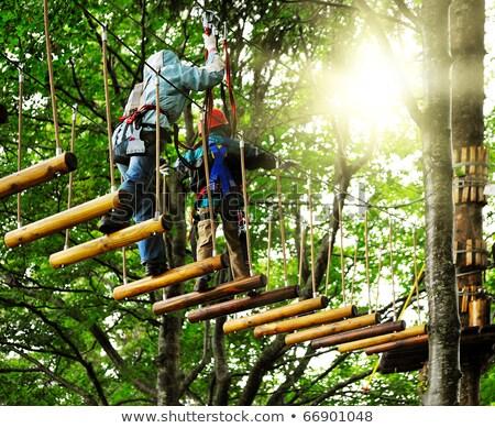 Stockfoto: Adventure Climbing High Wire Park