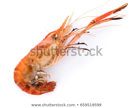 Grilled Giant Prawns Stock photo © dirkr