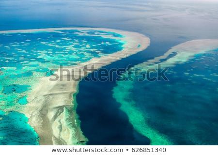 Nagy-korallzátony · légifelvétel · Queensland · Ausztrália · szív · háttér - stock fotó © mroz