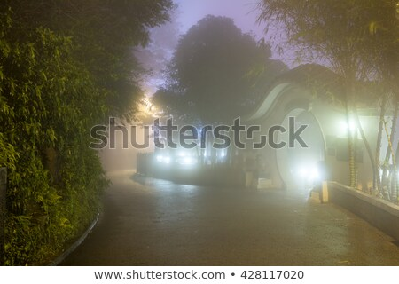 mystery fog in the park with asian architecture hong kong stock photo © taiga