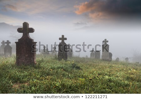 Headstone in the old cemetery Stock photo © amok