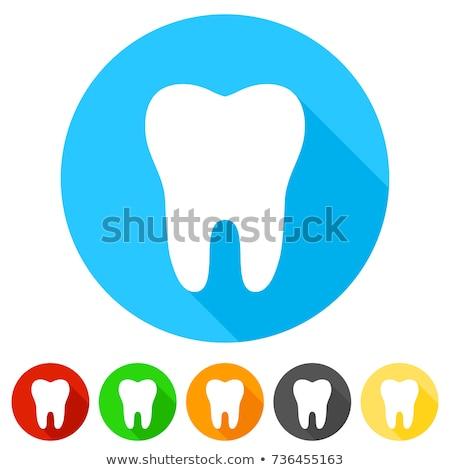 Dental health care round flat vector icons Stock photo © vectorikart