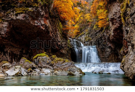 landscape of waterfall in yellow autumn forest stock photo © taiga