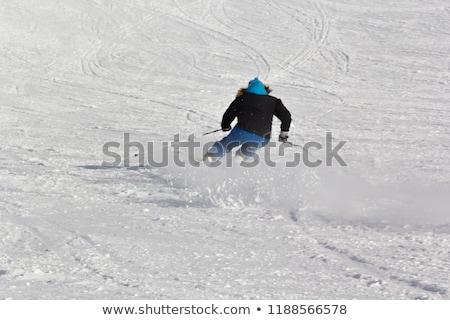 narty · narciarskie · resort · narciarz · szybko · ruchu - zdjęcia stock © zurijeta