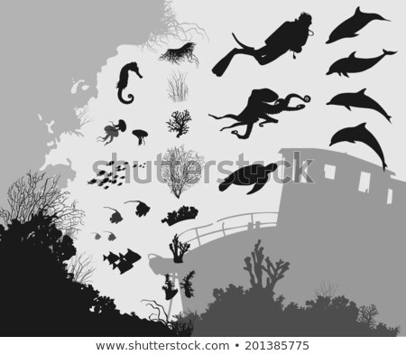 divers diving at coral reef with sea turtle and different fishes stock photo © kzenon
