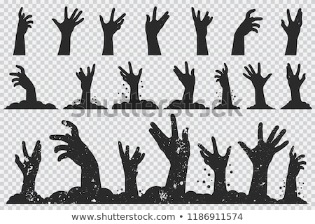 Zombie Hands Sticking out from the Ground Vector Stock photo © robuart