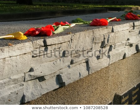 8 may World war II commemorative day Stock photo © Olena