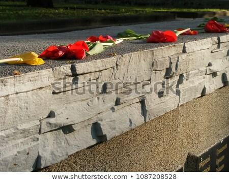 8 may world war ii commemorative day stock photo © olena