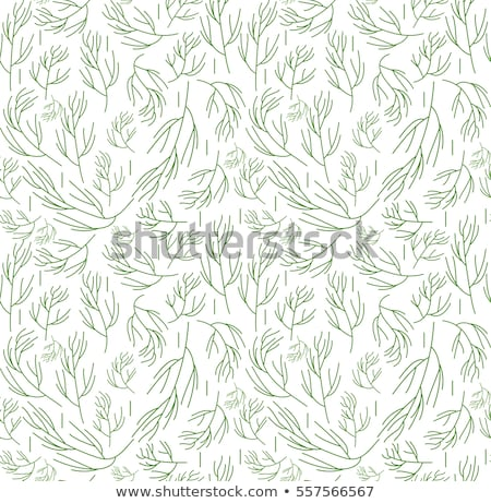 herbs seamless pattern dill endless background texture vegetable backdrop vector illustration stock photo © lucia_fox