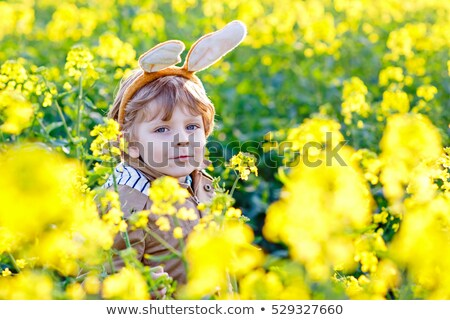 boy, bunny finding easter eggs Stock photo © IS2