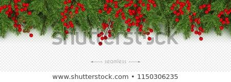 Fichte Weihnachten transparent grünen Dekoration Schnee Stock foto © romvo