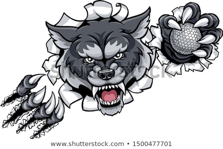 wolf golf mascot breaking background stock photo © krisdog
