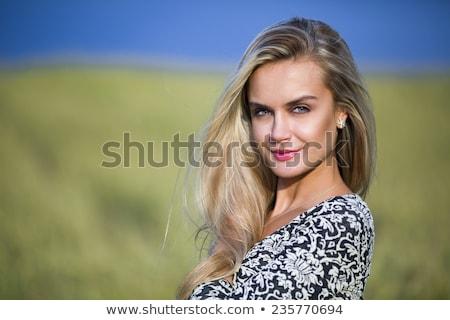 Dziedzinie świetle spadać słonecznej trawy Zdjęcia stock © nemalo