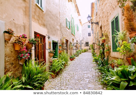 Beautiful old stone houses in Spanish ancient village Stock photo © digoarpi