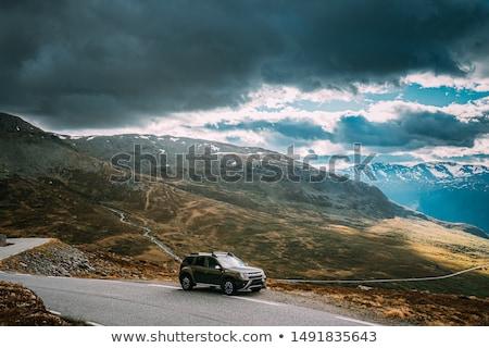 норвежский живописный маршрут парень синий куртка Сток-фото © Kotenko