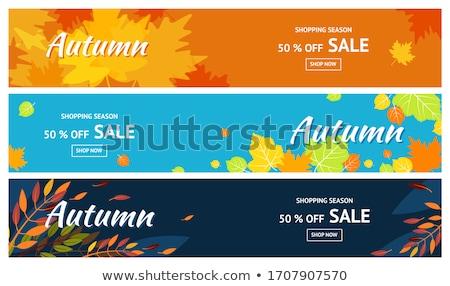 Vektor ősz szalag ősz vásár terv Stock fotó © kostins