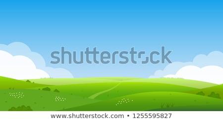Sziluett kilátás vidék dombok oldal terv Stock fotó © alexaldo