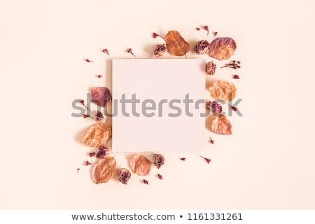 秋 秋 新鮮な 花 ホットチョコレート カップ ストックフォト © YuliyaGontar