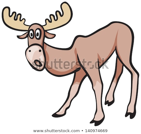 Sorpreso cartoon Moose illustrazione guardando animale Foto d'archivio © cthoman