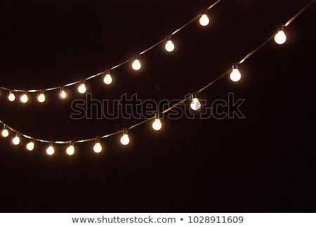 Light bulb decor in outdoor party stock photo © ruslanshramko