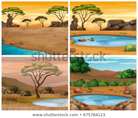 Four savanna scenes at different times of day Stock photo © colematt