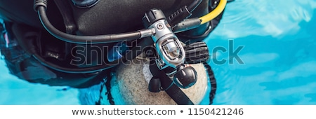 grey scuba diving air oxygen tank on the back of a scuba diver Stock photo © galitskaya
