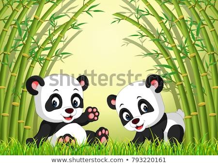 óriás · panda · eszik · bambusz · fa · levél - stock fotó © juhku