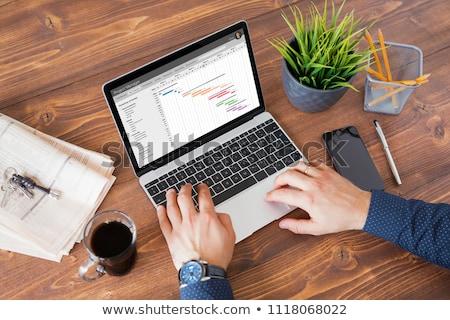 Businessman Working On Gantt Chart On Office Desk Stock photo © AndreyPopov
