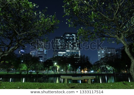 miedo · oscuro · ilustración · árbol · fiesta - foto stock © bluering