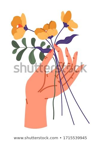 花 ベクトル フローラル 装飾 ホーム ストックフォト © robuart